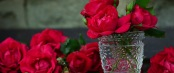 roses-red-roses-bouquet-of-roses-glass