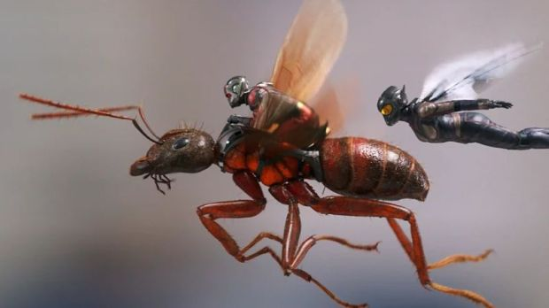 antman-and-the-wasp-header-4.jpg